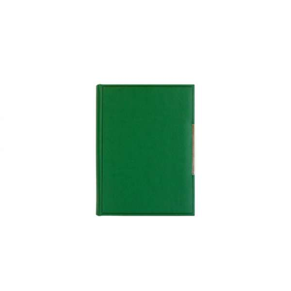 AGENDA LION A5 KELLY GREEN 129.607.43
